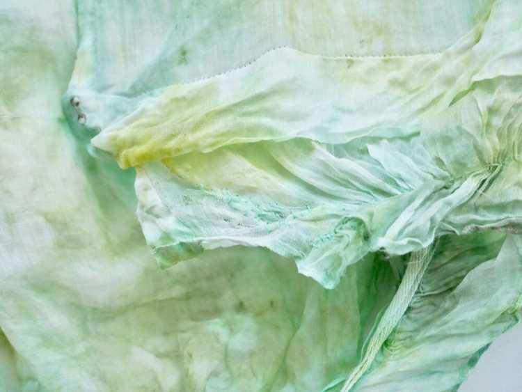 Algae Antique Victorian Blouse - image 6